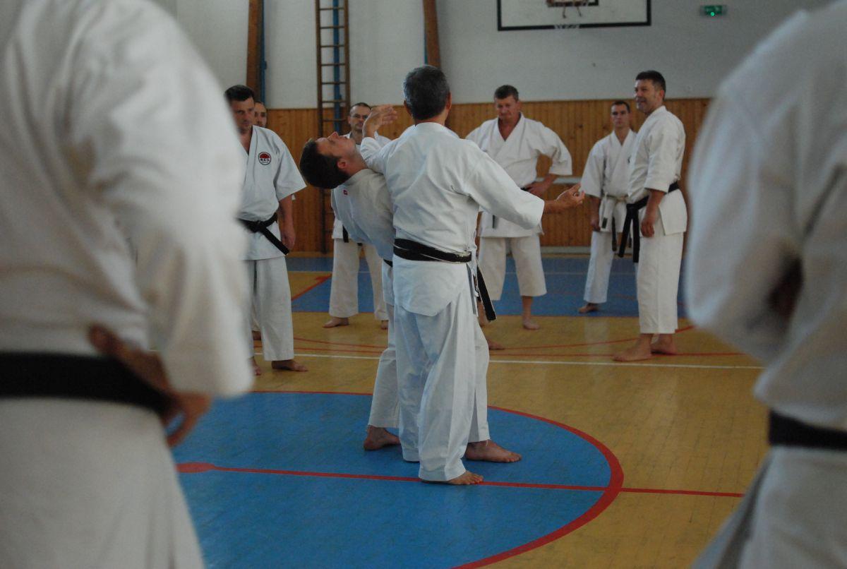 Semináre s Takeji Ogawom 463