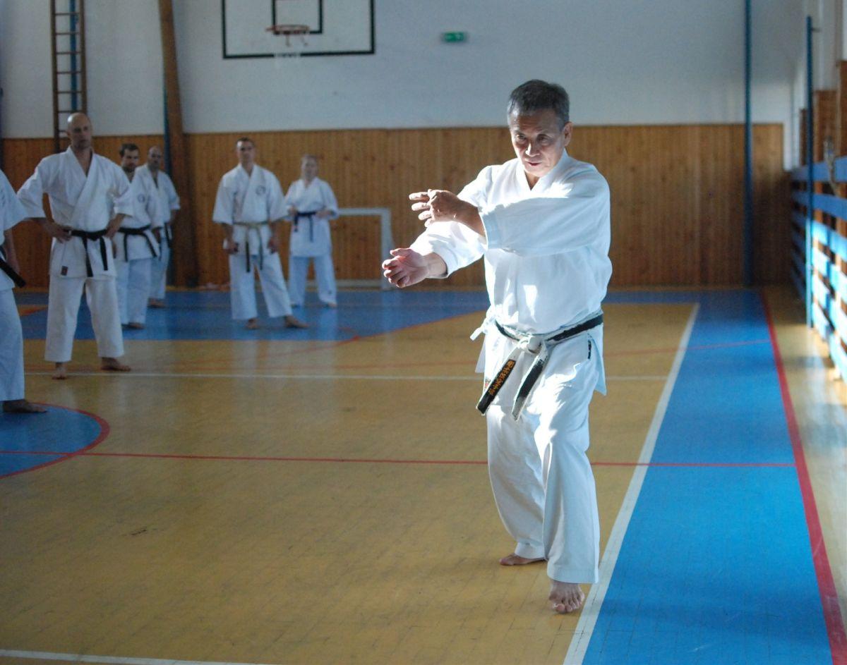 Semináre s Takeji Ogawom 464
