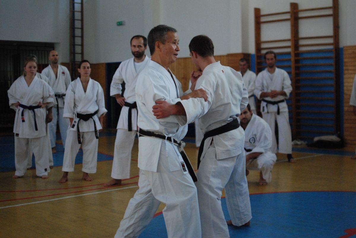 Semináre s Takeji Ogawom 465