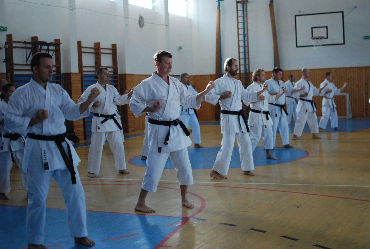 Semináre s Takeji Ogawom 466