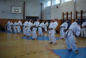 Semináre s Takeji Ogawom 467