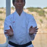 Semináre s Takeji Ogawom 496