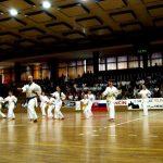 Vystúpenie karate Sokol Ilava 2006 Storočnica Sokola na Slovensku v Trenčíne 1063