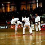 Vystúpenie karate Sokol Ilava 2006 Storočnica Sokola na Slovensku v Trenčíne 1064