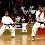 Vystúpenie karate Sokol Ilava 2006 Storočnica Sokola na Slovensku v Trenčíne 1065
