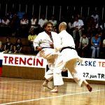 Vystúpenie karate Sokol Ilava 2006 Storočnica Sokola na Slovensku v Trenčíne 1066