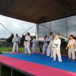 Vystúpenie karate Sokol Ilava 2019 100.r.športu v Ilave 1095